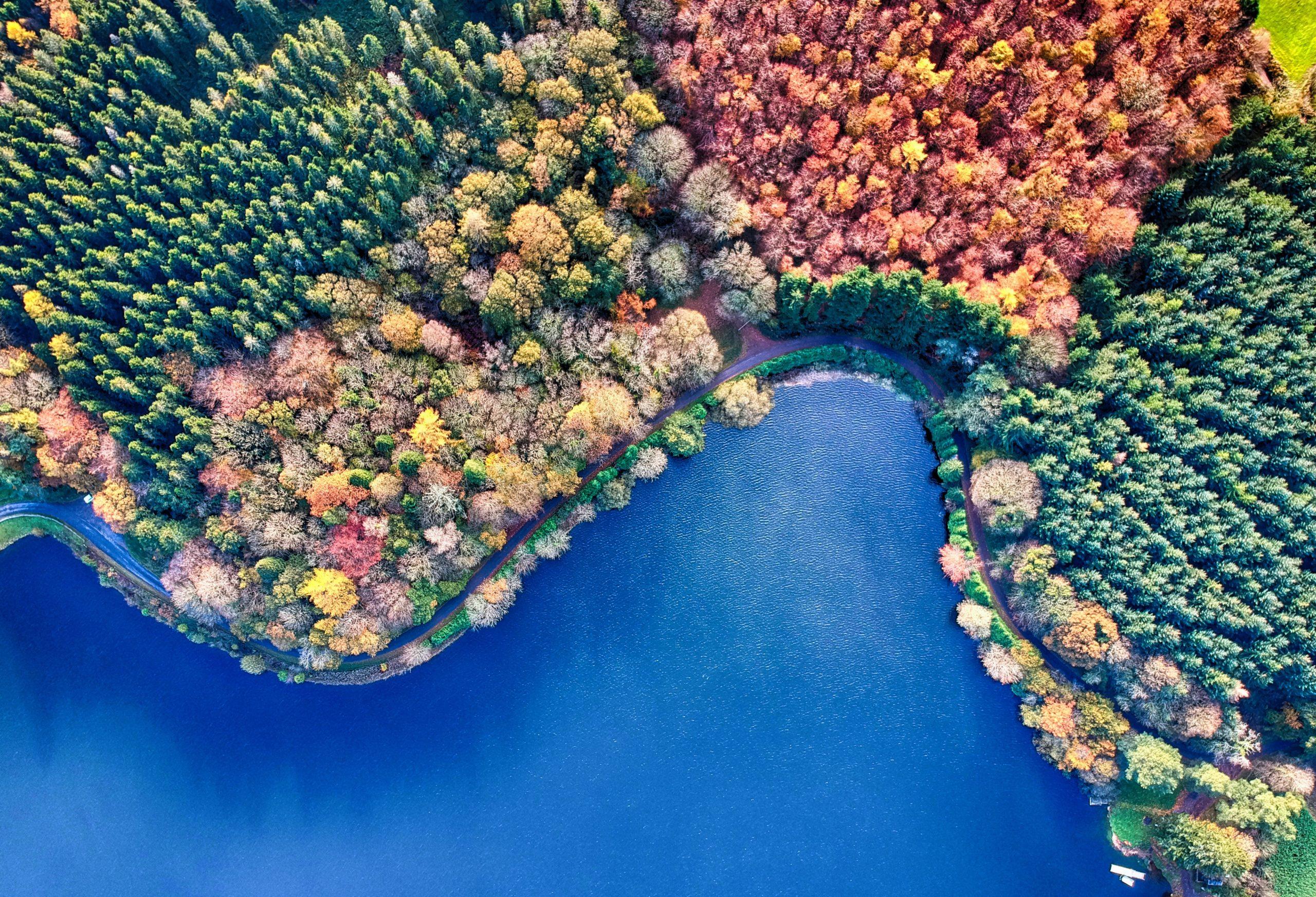 8 ans de Venture Capital dans l'environnement : où en est-on aujourd'hui ?